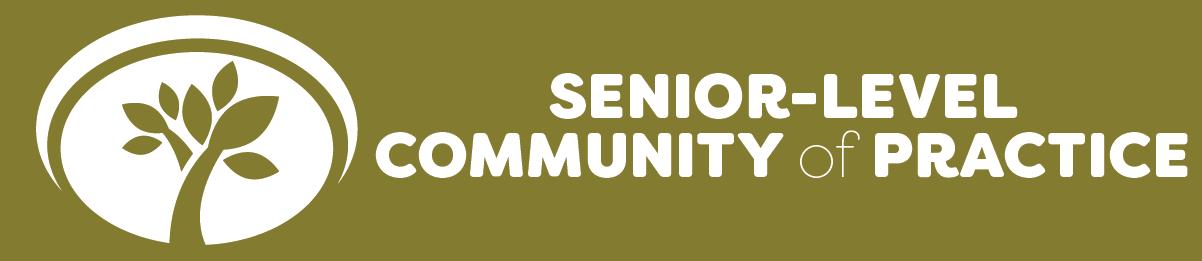 Senior level community of practice